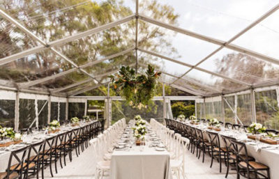 Excel Clear Wedding Marquee