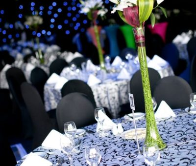 party hire Gold Coast